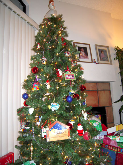 Our-tree